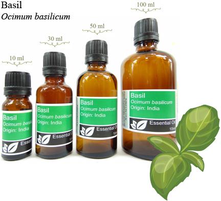 Basil Essential Oil | Basil Oil Benefits & Uses | Powells Aromatherapy