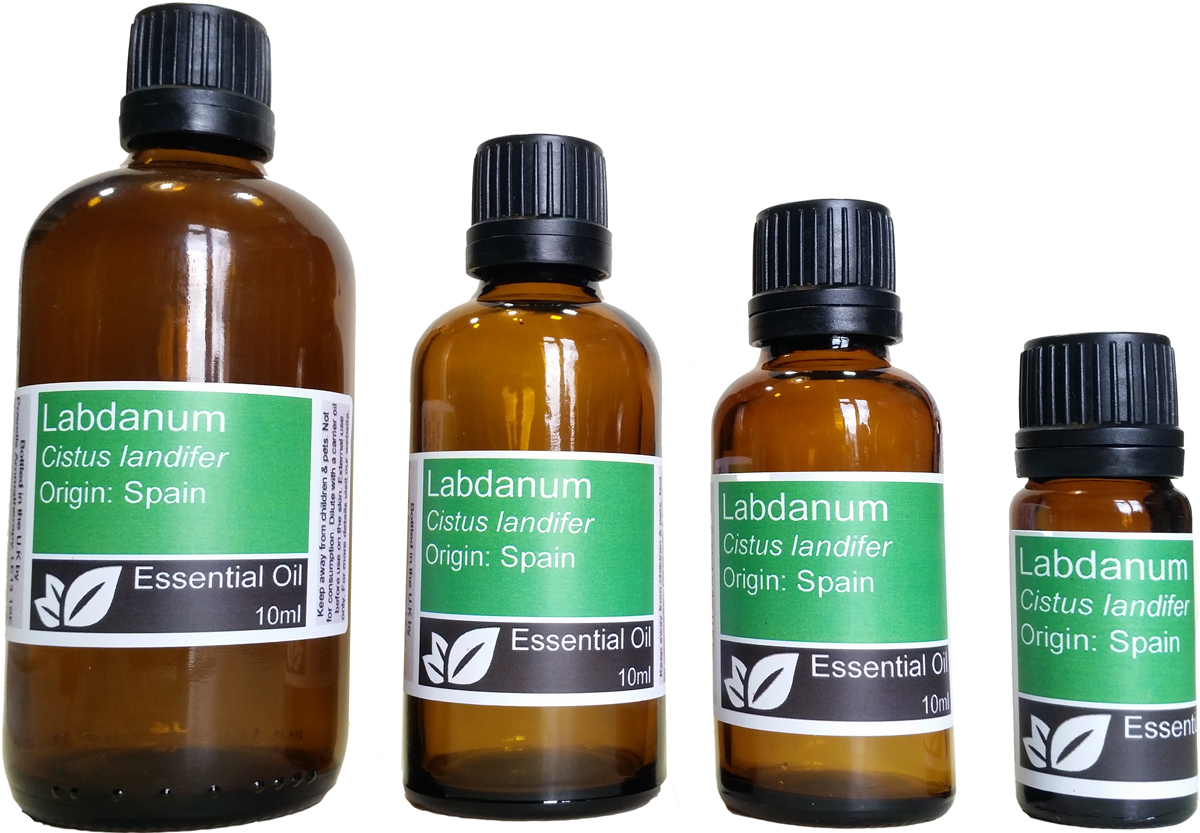Labdanum Essential Oil Labdanum Essential Oil Benefits Powells Aromatherapy Products
