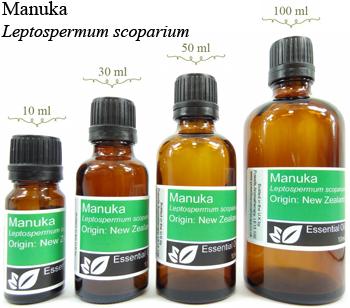 Manuka Essential Oil Benefits Uses Powells Aromatherapy